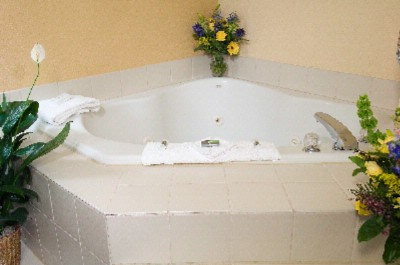 Relax In One Of Our Spa Rooms With A Jacuzzi Tub. 9 of 13
