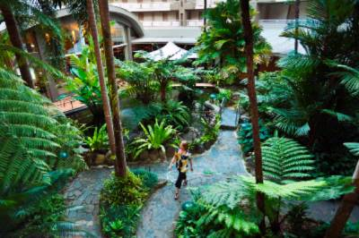 Rainforest Atrium And Barramundi Pool 6 of 8