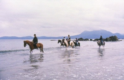Horseriding On Local Beach 14 of 27