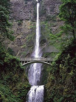 Multnomah Falls Natural Wonder 7 of 11