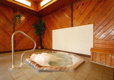 Indoor Spa/hot Tub 8 of 11