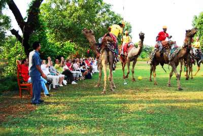 Camel Polo In Our Lawns At Umaid Lake Palace-03 16 of 31