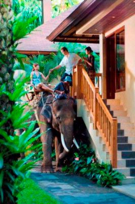 Image of Elephant Safari Park Lodge