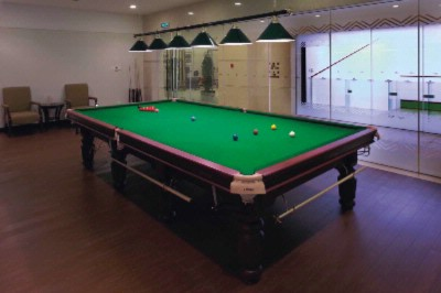 Snooker Room 28 of 31