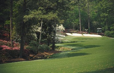 Augusta National 8 of 10