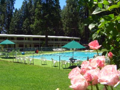 Long Barn Lodge Pool And Motel 2 of 10