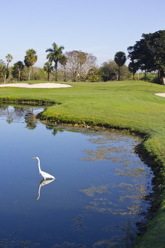 The Senator Course At Shula\'s Golf Club 10 of 16