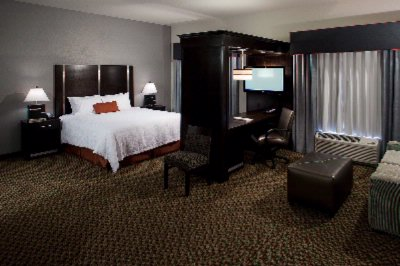 Sweet Deal! King Suites Feature Larger Guestroom Space And All Of The Amenities Of Our Standard Guestrooms In Addition To A Seating Area With A Sofabed An Expanded Work Area And A Wet Bar. 18 of 18