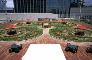 Roof Top Garden -Amenity Space For Staying Guests 15 of 18