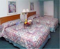 Double Occupancy Room 4 of 6