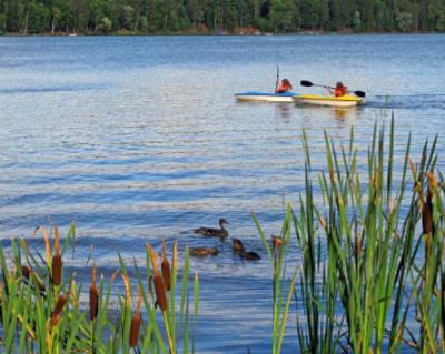 Complimentary Canoes Kayaks Boats And Wildlife! 5 of 16
