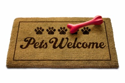 Pets Are Welcome! 17 of 20