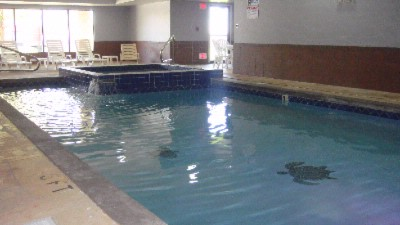 Indoor Pool With Hot Tub 4 of 6