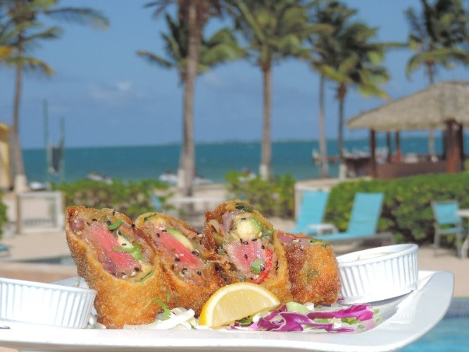Egg Rolls From The Blue Iguana Grill 17 of 25