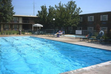 Long Day? Unwind In Our Outdoor Pool! 3 of 7