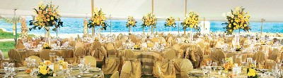 Experienced Wedding Planners To Help You Create Your Vision For A Perfect Day. 30 of 31