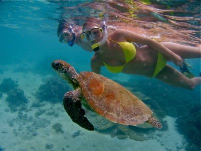Snorkel With Turtles At Turqouise Bay 13 of 15