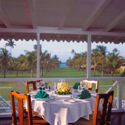 Enjoy Afternoon Tea Overlooking The Avenue Of Palms At Nisbet Plantation 9 of 16