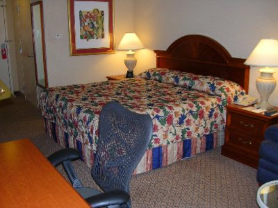 King Bedded Room 8 of 11