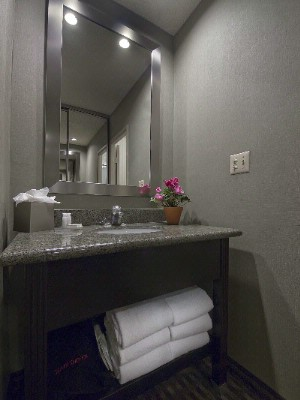 Standard Bathroom 14 of 22