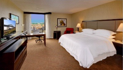 Superior King Guestroom 4 of 11