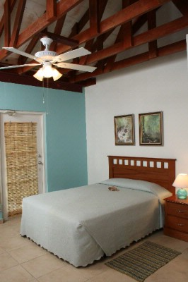 Villa 2nd Floor Bedroom 7 of 16