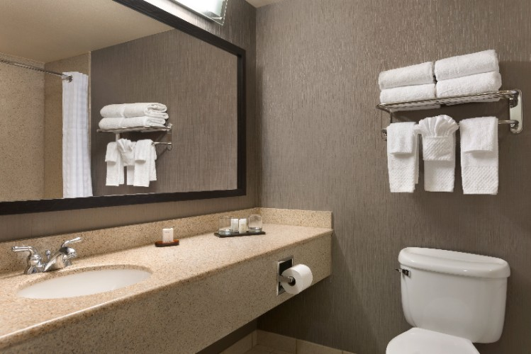 Standard Suites Guest Bath 7 of 16