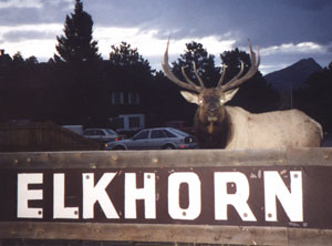 The Elkhorn Lodge 1 of 11