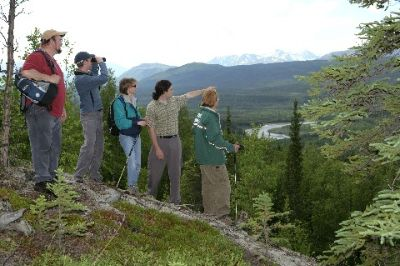 Explore Denali Hiking Excursions 6 of 7