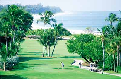 Executive & Professional Golf Courses 9 of 11