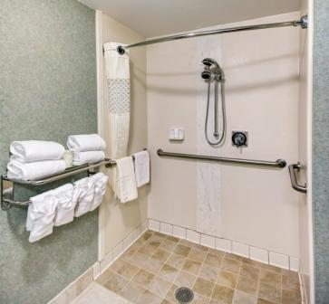 Accessible Roll-In Shower 11 of 16