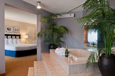 Upgraded Jacuzzi Suite With King Bed Microwave And Mini Refrigerator 3 of 7
