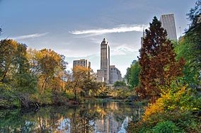 Central Park In The Fall 10 of 14