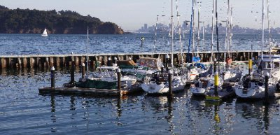 Postcard Views Of The San Francisco Skyline Angel Island And The Corinthian Yacht Club 4 of 11