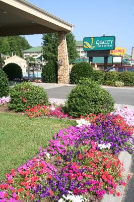 Quality Inn & Suites at Dollywood Lane 1 of 11