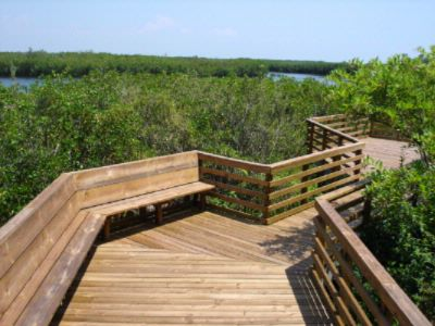 Enjoy The City Parks And Wildlife Of Oldsmar 28 of 31