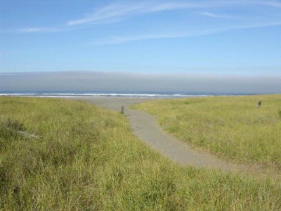 Path To The Ocean & Discovery Trail 6 of 15