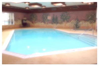 Indoor Swimming Pool 7 of 16