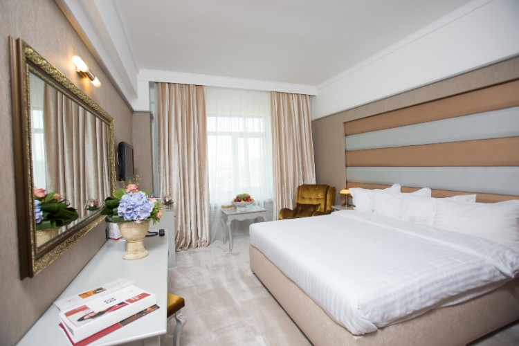 Premium Matrimonial Room 2 of 16