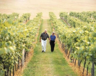 Tour Lehigh Valley\'s Best Vineyards. 9 of 13