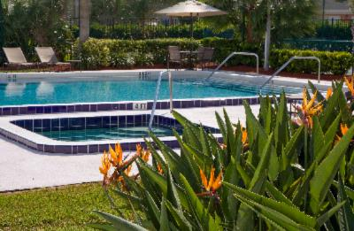 Enjoy A Swim In Our All-Season Pool & Jacuzzi. 5 of 14