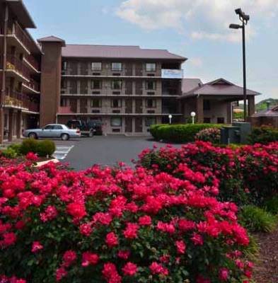 Baymont Inn & Suites Pigeon Forge 1 of 9