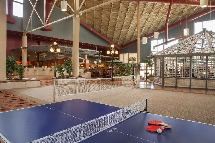 Indoor Atrium With 40ft Ceilings And Sports Activities 7 of 23