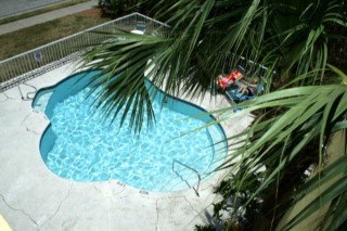 Enjoy Our Tropical Pool Area 3 of 8