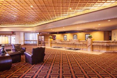 Hotel Lobby -Warm & Inviting With Plenty Of Areas To Gather For A Quick Meeting Or To People Watch. 11 of 15