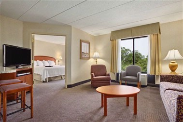 King Suite Guestroom 13 of 19