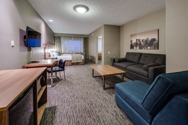 Elite Junior Suite: Living Room 13 of 21