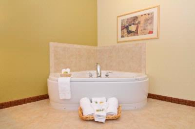 Jacuzzi Suite 9 of 13