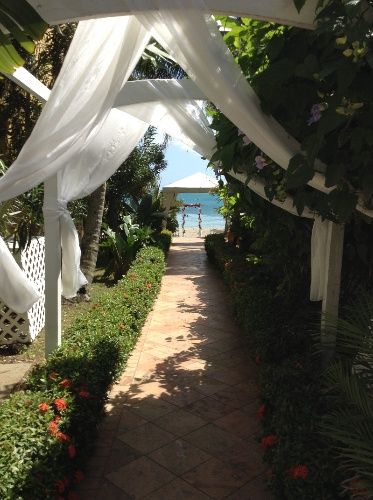 Wedding Walkway 8 of 8