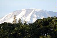 Mt Kilimanjaro. View From The Balcony 15 of 16